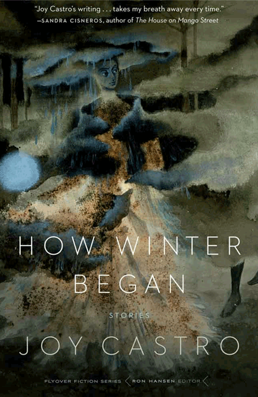 Cover of HOW WINTER BEGAN